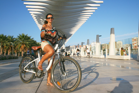 Electric bike in the Palm Grove of surprises tour · QQ Bikes